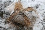 paille ( archives Lo Gnalèi - photo : Bruno Domaine )